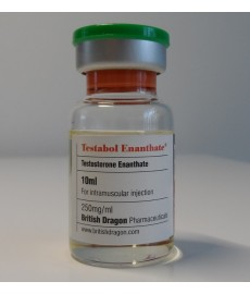 Testabol Enanthate, Testosterone Enanthate, British Dragon, 250 mg/ml, 10 ml